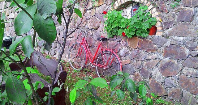 Atletska majica i biciklana