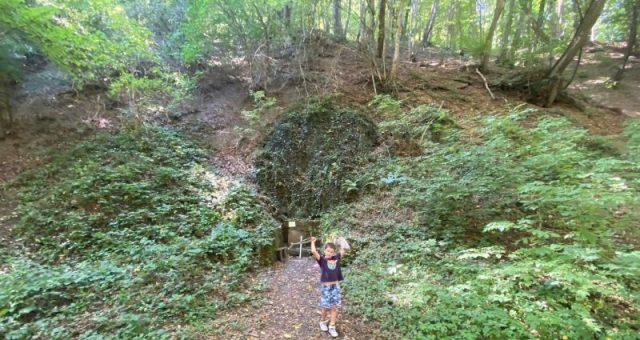 Hiking Fruška Gora – Miličin izvor