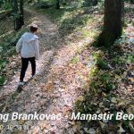 Hiking Fruška Gora, manastir Beočin